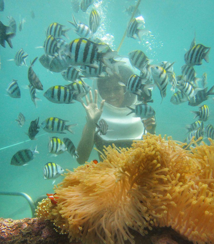 Seawalker Experience em Bali: o Guia Completo
